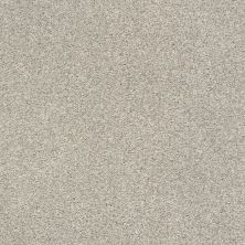 Shaw Floors SFA Find Your Comfort Tt II Shoreline Haze (t) 128T_EA818