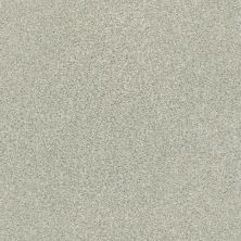 Shaw Floors SFA Find Your Comfort Tt II Willow Tree (t) 330T_EA818