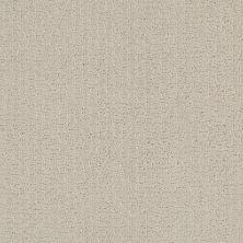 Shaw Floors Value Collections Warm Memoriesblnet Need A Hug 0129P_EA831