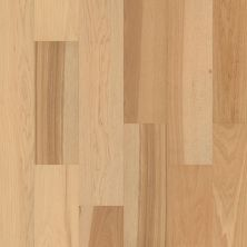 Shaw Floors Floorte Exquisite Fresh Hickory 01104_FH813