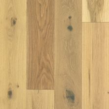 Shaw Floors Floorte Exquisite Harvest Oak 02056_FH820