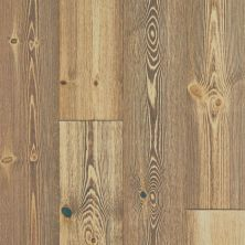 Shaw Floors Floorte Exquisite Spiced Pine 06004_FH820