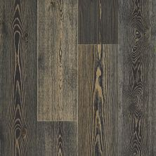 Shaw Floors Floorte Exquisite Midnight Pine 09038_FH820