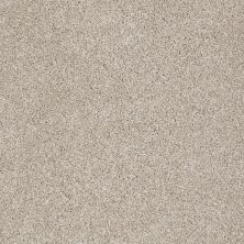 Shaw Floors Trenton Heights Cork Board 00711_FQ279