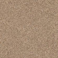 Shaw Floors Sorin II Arrowhead 00770_FQ412