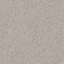 Shaw Floors Home Foundations Gold Perfect Match I Winter Dunes 00123_FQ601