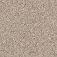 Shaw Floors Home Foundations Gold Perfect Match I Grecian Tan 00720_FQ601