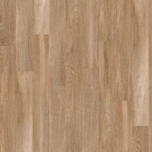 Shaw Floors To Go Hard Surfaces Yorktown Plank 6 Brussels 00235_FR536