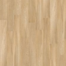 Shaw Floors To Go Hard Surfaces Yorktown Plank 6 Paris 00343_FR536