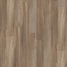 Shaw Floors To Go Hard Surfaces Yorktown Plank 6 Seattle 00574_FR536