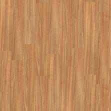 Shaw Floors To Go Hard Surfaces Unita Park Plank 12 Mil City Market 00633_FR538