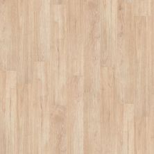 Shaw Floors To Go Hard Surfaces Unita Park Plank 20 Sidewalk 00126_FR539