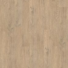 Shaw Floors To Go Hard Surfaces Unita Park Plank 20 Ferry 00529_FR539