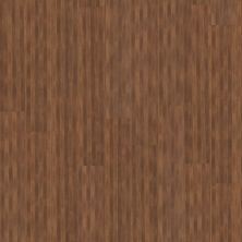 Shaw Floors To Go Hard Surfaces Unita Park Plank 20 Cafe 00777_FR539