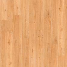 Shaw Floors Yorktown Plank 12 San Francisco 00251_FR540
