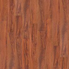 Shaw Floors Yorktown Plank 12 St. Louis 00618_FR540