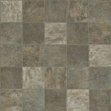 Shaw Floors Resilient Residential Weber Lassen 00528_FR585