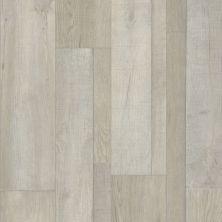 Shaw Floors Resilient Residential Virginia Trail HD Plus Vista 00197_FR614