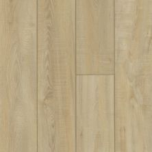 Shaw Floors Resilient Residential Virginia Trail HD Plus Colosseum 00298_FR614