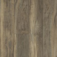 Shaw Floors Resilient Residential Virginia Trail HD Plus Ardesia 00558_FR614