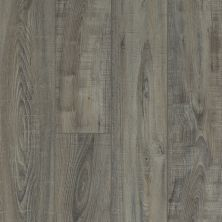 Shaw Floors Resilient Residential Virginia Trail HD Plus Temporale 00578_FR614