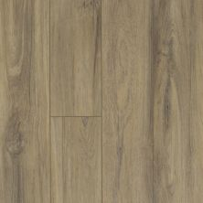 Shaw Floors Resilient Residential Virginia Trail HD Plus Fiano 00587_FR614