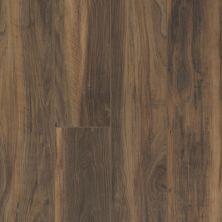 Shaw Floors Resilient Residential Virginia Trail HD Plus Terreno 00737_FR614