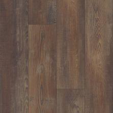 Shaw Floors Resilient Residential Virginia Trail HD Plus Orso 00794_FR614