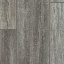 Shaw Floors Resilient Residential Virginia Trail HD Plus Giardino 05049_FR614