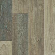 Shaw Floors Resilient Residential Virginia Trail HD Plus Prateria 07046_FR614