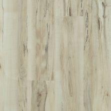 Shaw Floors Travera Plus 20 Mineral Maple 00297_FR622