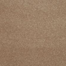 Shaw Floors Shaw Floor Studio Home News II 12′ Antique Parchment 00102_FS130