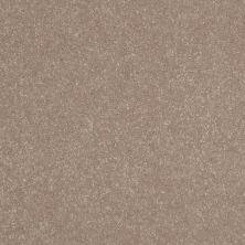 Shaw Floors Shaw Floor Studio Home News II 12′ Crisp Khaki 00103_FS130
