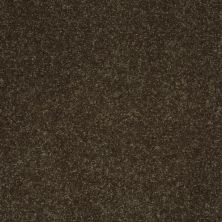Shaw Floors Shaw Floor Studio Home News II 15′ Silken Moss 00304_FS131