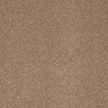 Shaw Floors Shaw Floor Studio Home News III 12′ Antique Parchment 00102_FS132