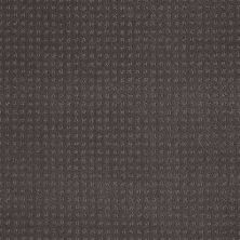 Shaw Floors Shaw Floor Studio Style Options Stainless 00501_FS148
