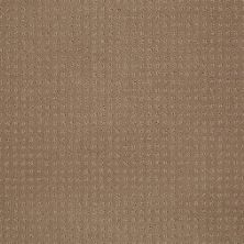 Shaw Floors Shaw Floor Studio Style Options Perfect Beige 00703_FS148
