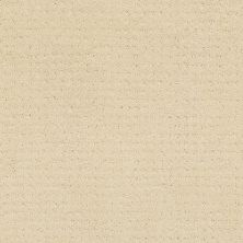 Shaw Floors Shaw Floor Studio Style With Ease Airy White 00100_FS150