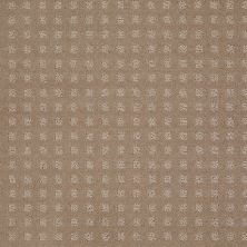 Shaw Floors Shaw Floor Studio Style With Ease Chameleon 00104_FS150