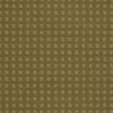 Shaw Floors Shaw Floor Studio Style With Ease Aloe 00300_FS150