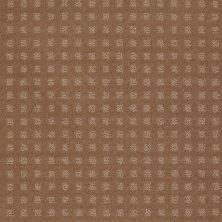 Shaw Floors Shaw Floor Studio Style With Ease Townhouse Taupe 00705_FS150
