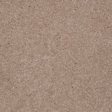 Shaw Floors Shaw Floor Studio Complete Hold II Travertine 00701_FS155
