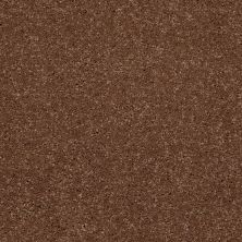 Shaw Floors Shaw Floor Studio Complete Hold II Suede 00710_FS155