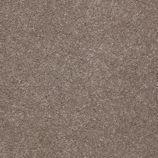 Shaw Floors Shaw Floor Studio Complete Hold II Fleece 00722_FS155