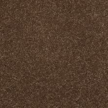 Shaw Floors Shaw Floor Studio Complete Hold II Brown Rice 00760_FS155