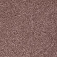 Shaw Floors Shaw Floor Studio Complete Hold II Violet 00922_FS155