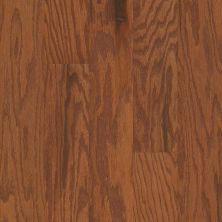 Shaw Floors Fischer Homes Blackbrook Gunstock 00780_FSH35