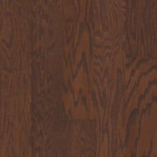 Shaw Floors Fischer Homes Blackbrook Hazelnut 00874_FSH35