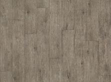 Shaw Floors Fischer Homes Westerfield Pathfinder 00551_FSH55