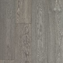 Shaw Floors Fischer Homes Camargo Chateau 05056_FSH63